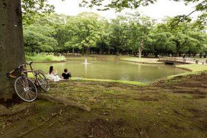 Yoyogi Park - Tokyo